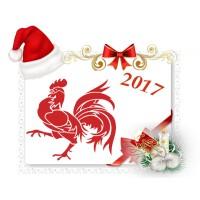 Где и как лучше встречать Новый год 2017