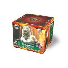 Бенгальский тигр 49
